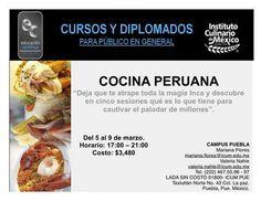 Cocina Peruana / ICUM / Puebla