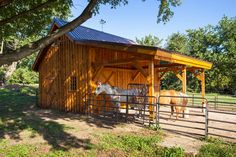 Barn Ponderosa Country Barn project by Sand Creek Post & Beam. View this gallery for ideas on your next dream barn. Horse Shed, Horse Barn Plans, Horse Arena, Barn Stalls, Horse Stalls, Small Horse Barns, Metal Horse Barns, Horse Shelter, Run In Shed