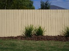 Standard Pine Paling Fence Painted