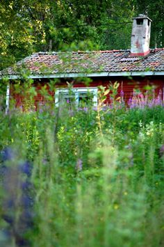 red Scandinavian house behind the meadow - this reminds me of the red garage we had at 1005. I actually thought it was one of my photos, but we never had a meadow...