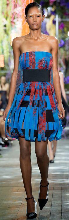 Christian Dior s/s 14 #PFW
