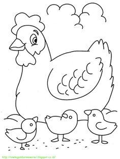 Aneka Gambar Mewarnai - 15 Gambar Mewarnai Ayam Untuk Anak PAUD dan TK.