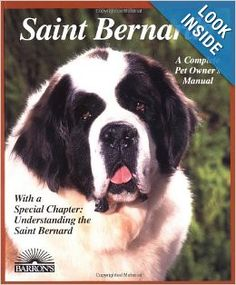 This legendary breed is strictly for an owner who prefers a giant-size dog and has the space to keep one comfortably. The St. Bernard is noted for its congenial temperament and comes in both shorthair