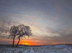 Winterlandschap in Groningen    (Van vroegevogels)