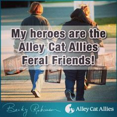 The Alley Cat Allies Feral Friends Network is a group of people across the country who are actively protecting and improving the lives of cats. Interested? Alleycat.org/FeralFriends