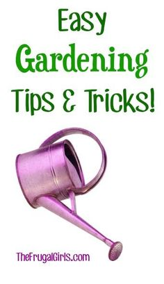 Gardening tips and tricks!