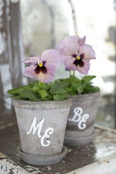 Pansies in small silver pails-