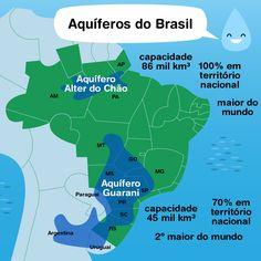 Um oceano embaixo da Amazônia. O Aquífero Alter do Chão, o maior do mundo, corre por baixo da floresta do Acre até a ilha de Marajó. A floresta mantém o ciclo da água em movimento e abastece os lençóis freáticos há milhões de anos. Precisamos dela em...