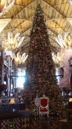 Animal Kingdom Lodge (2010)