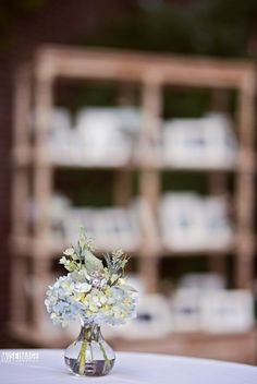 Floral&Design| Beautiful Blooms, Photography| Wise Image Photography
