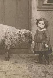 Image result for vintage sheep engraving