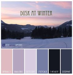 Winter Color Palettes for Design Inspiration ~ pick two or three colors for outfit inspo. Color Schemes Colour Palettes, Colour Pallete, Color Combos, Winter Color Palettes, Colour Board, Winter Colors, Color Swatches, Color Theory, Dusk