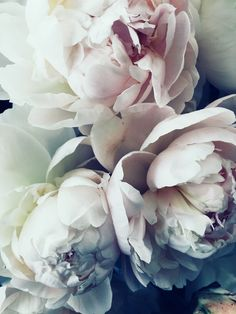FOR THE FLOWERS || Bouquets of soft pink peonies || NOVELA...where the modern romantics play & plan the most stylish weddings (Instagram: @novelabride) www.novelabride.com