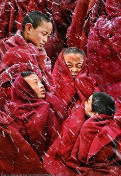 Même les petits apprentis en sagesse peuvent avoir froid.../ Young monks. / Jeunes moines.