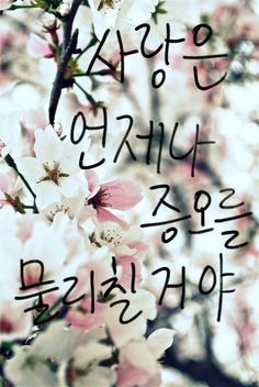 204 Best 갠소 Images Korean Lessons Learn Korea Learn Hangul