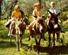 Pippi knew how to put men in their place. 18 Reasons Pippi Långstrump Was Your Childhood Hero Pippi Longstocking, Image Positive, Amazon Girl, Pet Monkey, Quirky Quotes, Book Sites, Strong Girls, Inspirational Books, Film Movie