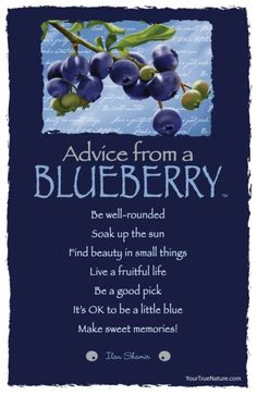 Advice from a Blueberry Frameable Art Card – Your True Nature, Inc. Blueberry Picking, Blueberry Farm, Blueberry Recipes, Advice Quotes, Life Quotes, Advice Cards, Top Quotes, Life Advice, Daily Quotes