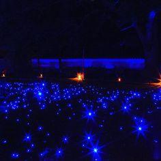 Instagram【leo5du】さんの写真をピンしています。 《Location:Kyoto  #Kyoto#japan#instagramjapan#team_jp#wu_japan#lovers_nippon#tokyocameraclub#japan_night_view#ig_worldclub#ig_japan#instagood#travelgram#ig_worldphoto#ink361#ig_shotz#wonderful_places#写真好きな人と繋がりたい#team_jp_西#wp_japan#京都#ファインダー越しの私の世界#東京カメラ部#special_shots#夜景#ライトアップ#ig_world_colors#main_vision#ig_sharepoint》