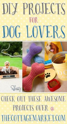 DIY Projects for Dog Lovers ...For the dog and the one that is owned by the dog!!! FUN and Fabulous Ideas for ALL YEAR ROUND!