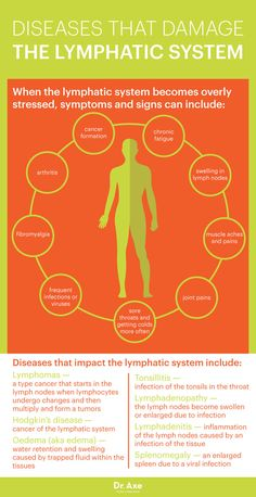 Lymphatic System: How to Make It Strong & Effective