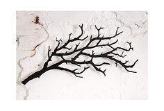 Small Tree Branch Hooks on OneKingsLane.com