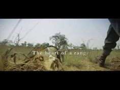 An emotional story about how a Ranger feels about protecting our Rhino and heritage Conservation, Ranger, South Africa, Wildlife, Feels, World, Business, Heart, Quotes