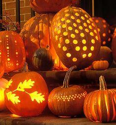 A collection of pumpkin lanterns. Pumpkin Masters LED Pumpkin Lights add a wonderful glow that also helps preserve your pumpkin longer. http://www.pumpkinmasters.com/lighting.asp (via Hiving Out Blog)