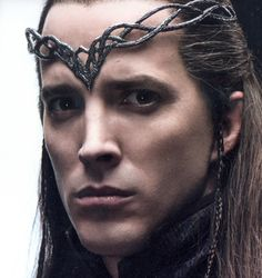 This is Lindir from the Hobbit, but this is much how I imagined Delethror.