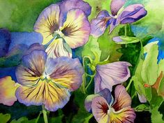 Pansies from Marni Maree Floral Paintings
