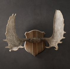 Did you know Restoration Hardware has a Horns & Antlers section on their website?