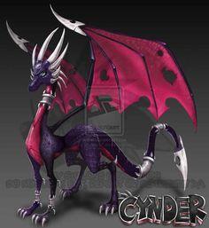 CYNDER ADULT