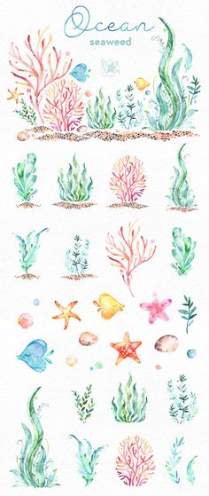 This Ocean Seaweed watercolor set is just what you needed for the perfect invitations, craft projects, paper products, party decorations, printable, greetings cards, posters, stationery, scrapbooking, stickers, t-shirts, baby clothes, web designs and much more.  :::::: DETAILS ::::::  This collection includes 34 files: - 1 Arrangement in PNG, transparent background - 33 Images in separate PNG files, transparent background  Size approx.: 14.6-1in (4400-300px)  300 dpi RGB  Set with underwater…