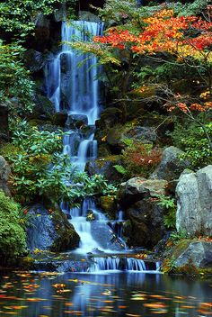 Heavenly Falls in the Fall at the Japanese Gardens by Gigapic, via Flickr