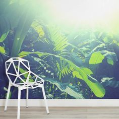 sun-kissed-jungle-leaves-jungle-square-wall-murals