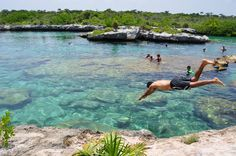 diving into a Cenote - deep limestone pit which dot the Yucatan