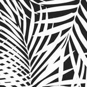 fronds white on black custom fabric by danika_herrick for sale on Spoonflower Tropical Curtains, Black And White Wallpaper, Canvas Designs, Designer Wallpaper, Custom Fabric, Tea Towels, Spoonflower, Cotton Canvas, Wall Art