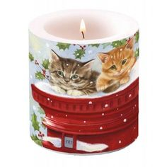 Vela para la mesa de navidad con gatitos en correo postal #velasnavidad #velas #navidad #velasgatos