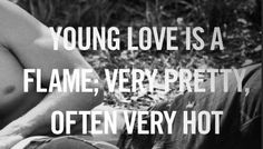 young love quotes | Young Love Is A Flame | SayingImages.com