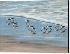 Sandpipers Canvas Print featuring the painting Sandpipers by Tina Obrien