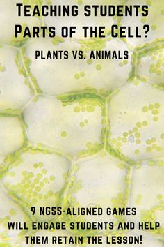Cell walls and chloroplasts: 8 science games on plant cells vs. animals cells. Sign Up Today!