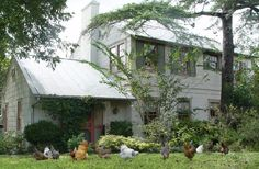 100% #GlutenFree B& B in Texas! Erin Smith visited this place.
