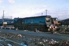 Live Steam Locomotive, Southern Trains, Southern Railways, Merchant Navy, Bullen, Battle Of Britain, Shed, British, Engine