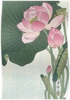 'Lotus Flower - Japanese Block Print' Art Print by fineearth Flowering lotus flowers, Ohara Koson, 1920 1930 / Japanese Woodcut Millions of unique designs by independent artists. Find your thing. Art Lotus, Lotus Kunst, Japanese Lotus, Japanese Flowers, Japanese Peony Tattoo, Japanese Water, Art Floral, Ohara Koson, Lotus Painting