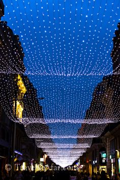 Christmas lights lining the street in Toulouse