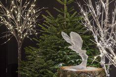 L'aigle royal - Lalique SA (c) R. Letscher