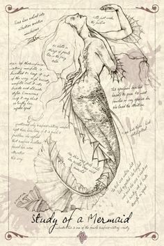 Study of a Mermaid
