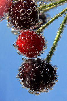 Cherries by Vendenis