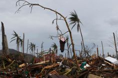 Erik de Castro - Reuters:  Nov. 12, 2013. A mannequin hangs on a tree amidst debris brought by super typhoon Haiyan in Palo, Leyte province in central Philippines.
