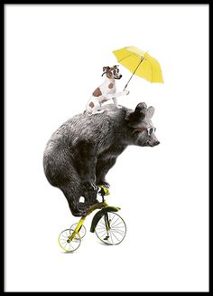 Fun print of a bear on a yellow bicycle and a dog. This illustration really brightens up a gray day! Looks great in a black frame by itself or combined with some other cute posters in an art wall collage. www.desenio.com
