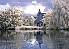 Bourne Mill, Colchester Essex by Mark Rivers Photography, via Flickr